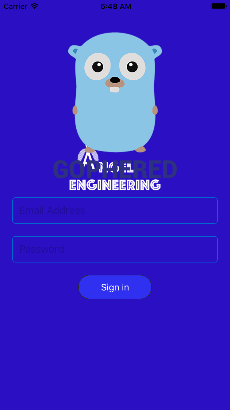 Login page without animation