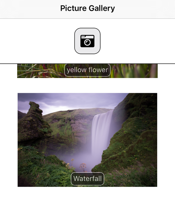 Stateful Nativescript picture gallery app with Font Awesome 5 icons